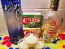 Margarita Pudding Shots